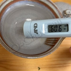 thermometer at 60C